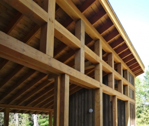 build green timber frame project by David Coulson Design